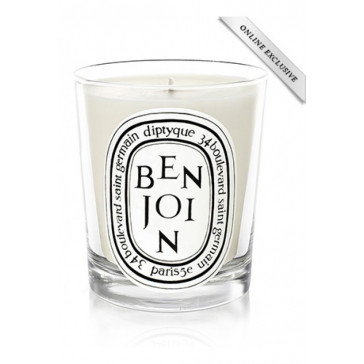 Diptyque Candle Benjoin